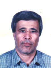 محمد قربانی - مدیر اجرایی