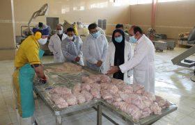 گزارش تصویری از بازدید مشترک فرمانداری و اداره صمت از تولید کنندگان در شهریاری